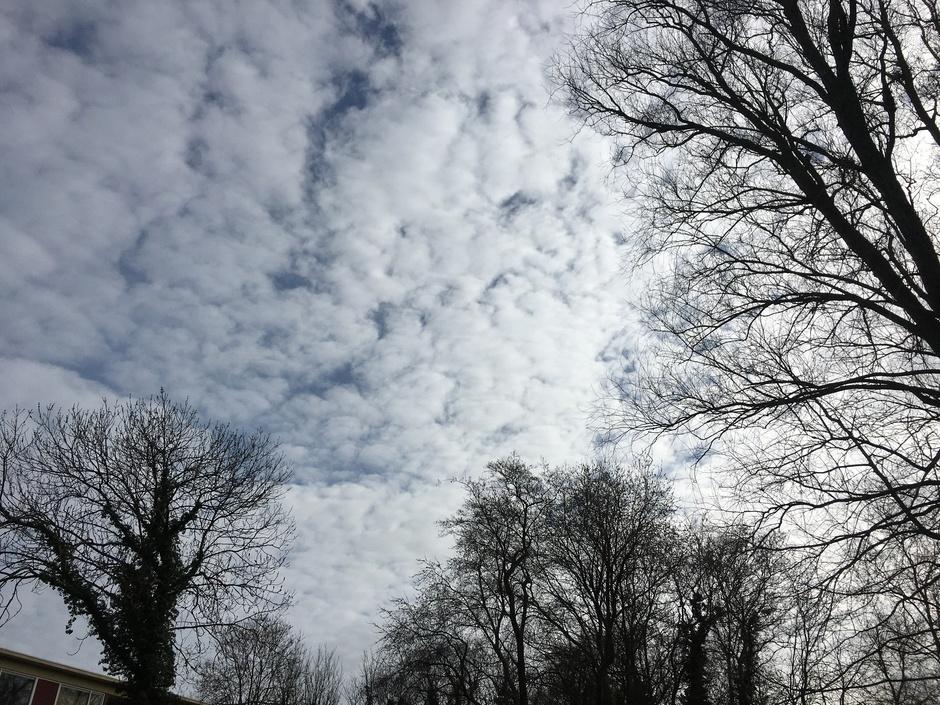 Wolkendek in het Noorden aardig dicht