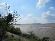 "Low tide on the Exe Estuary, from the ""East Devon Way"" footpath towards the bird hide, the Exe Estuary, next to the railway line"