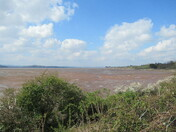 """Low tide on the Exe Estuary, from the """"East Devon Way"""" footpath towards the bird hide, the Exe Estuary, next to the railway line"""