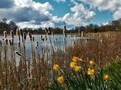 Blickling Lake