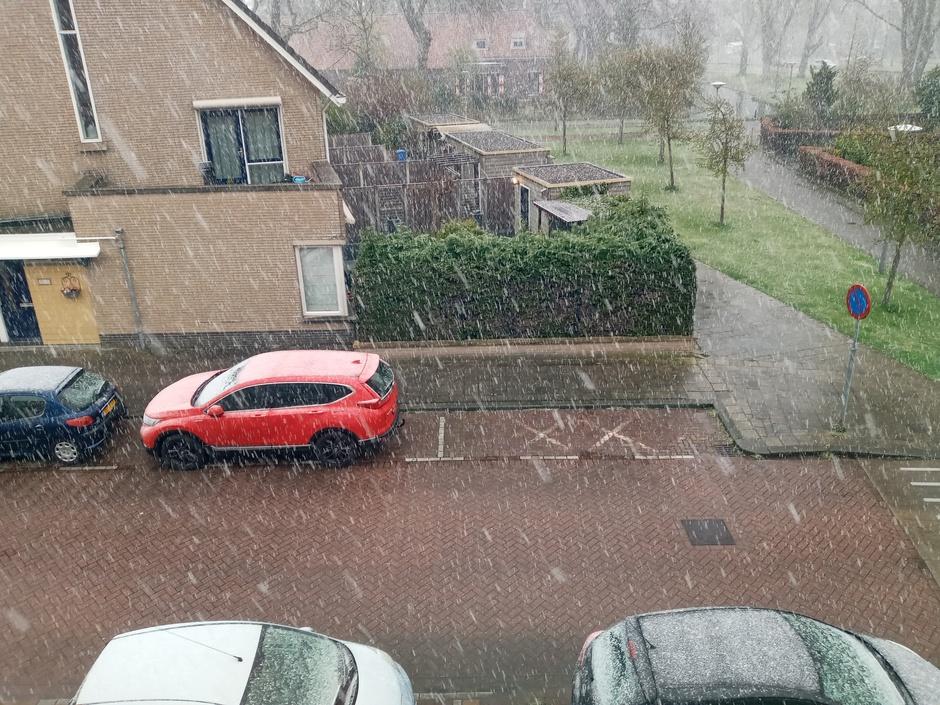 Sneeuw en wit op de auto's.