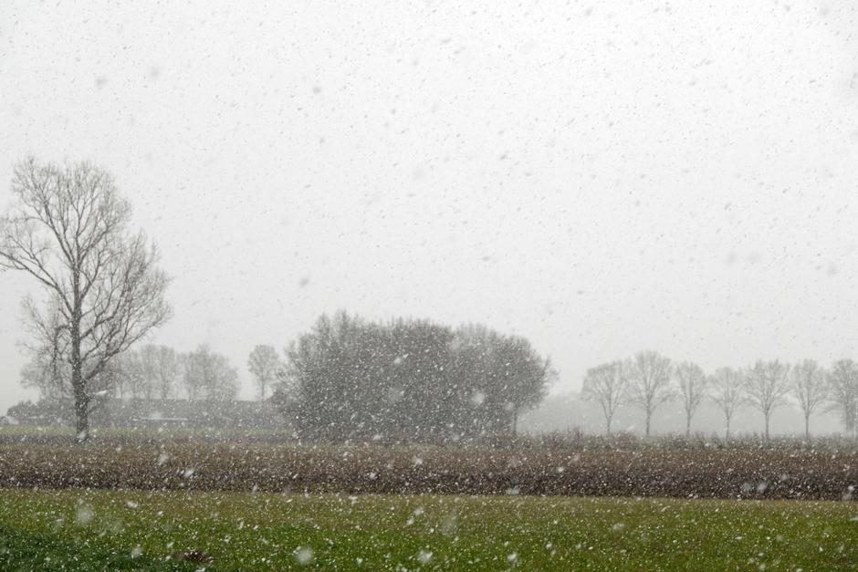 matige sneeuwbuien