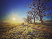 Frosty Norfolk sunrise