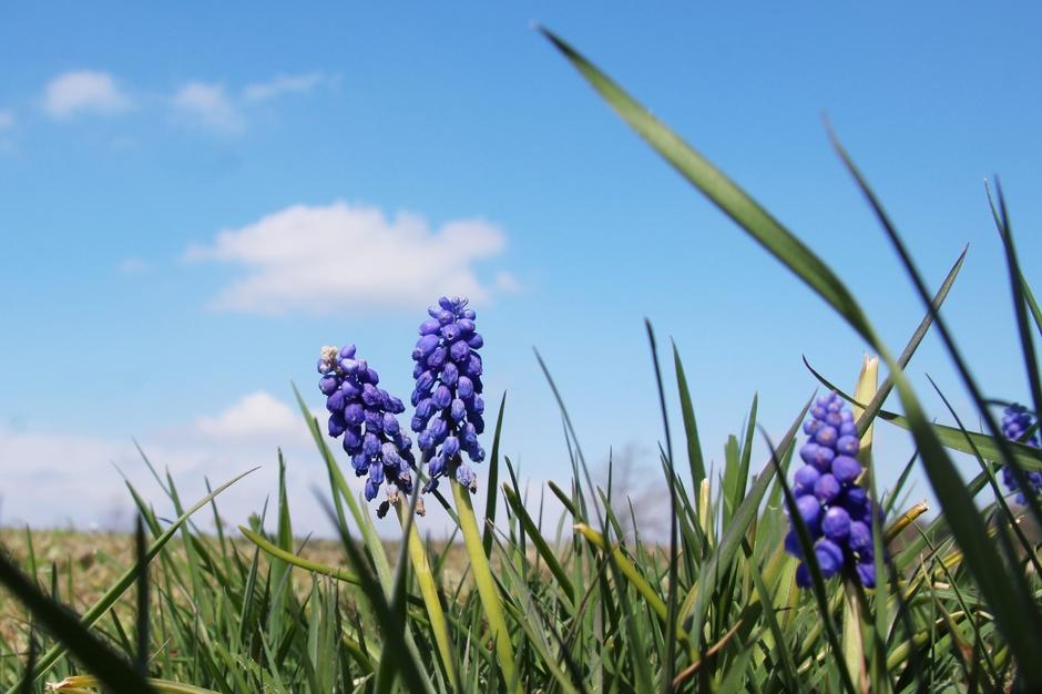 Wat een heerlijke lentedag