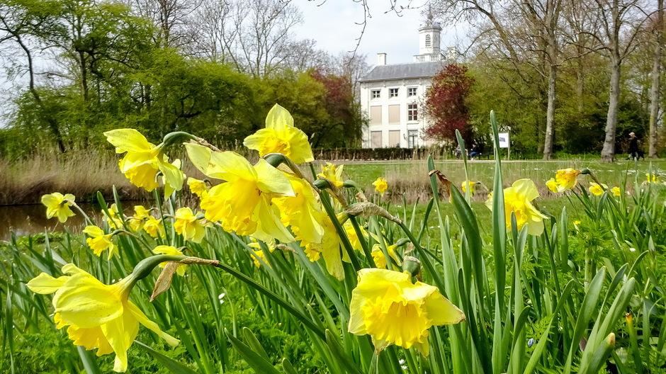 Mooie zonnige lentedag