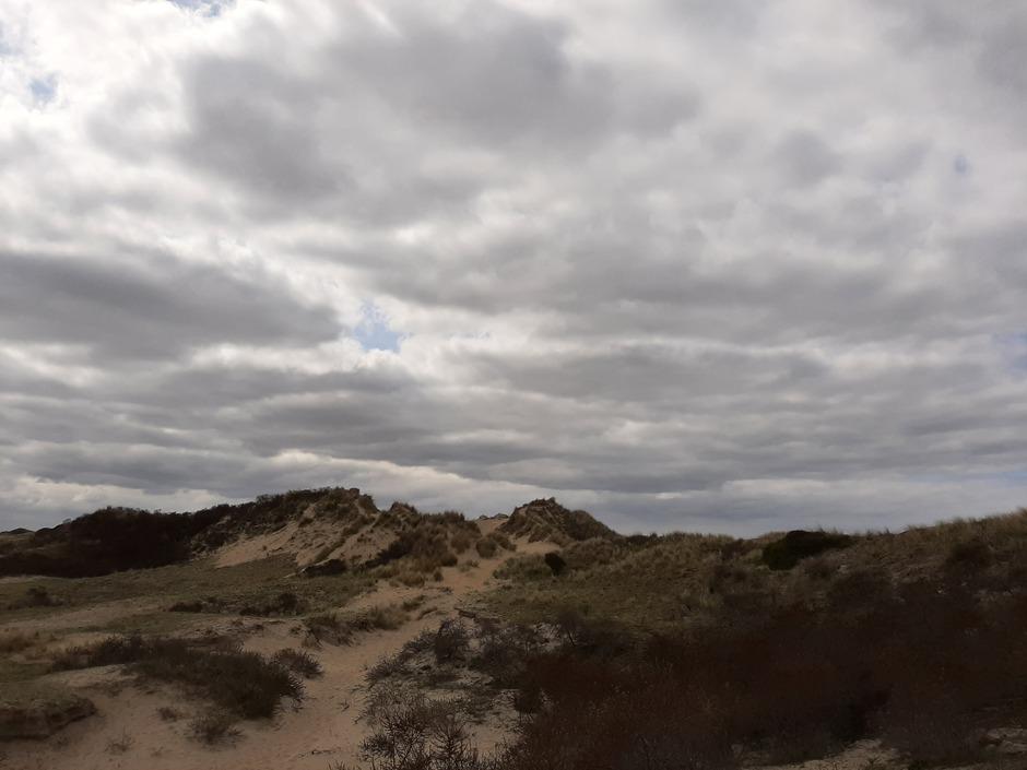 Veel wolken