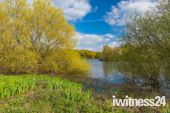 Spring at Alton Water