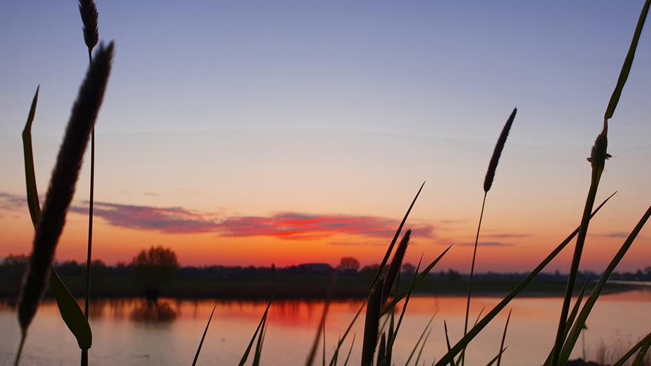 Rode zonsopgang