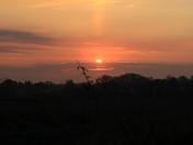 Sunrise at Fritton