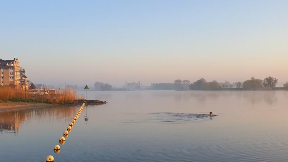 Een zwemmer in de Afgedamde Maas