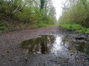 Raydon / Hadleigh  Railway Walk