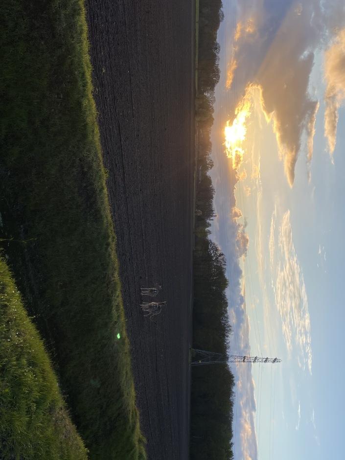 Foto voor het weer