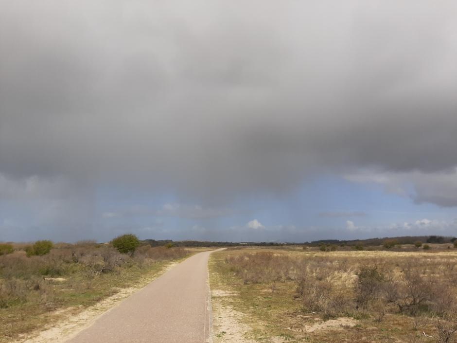 Valstrepen, regenbui