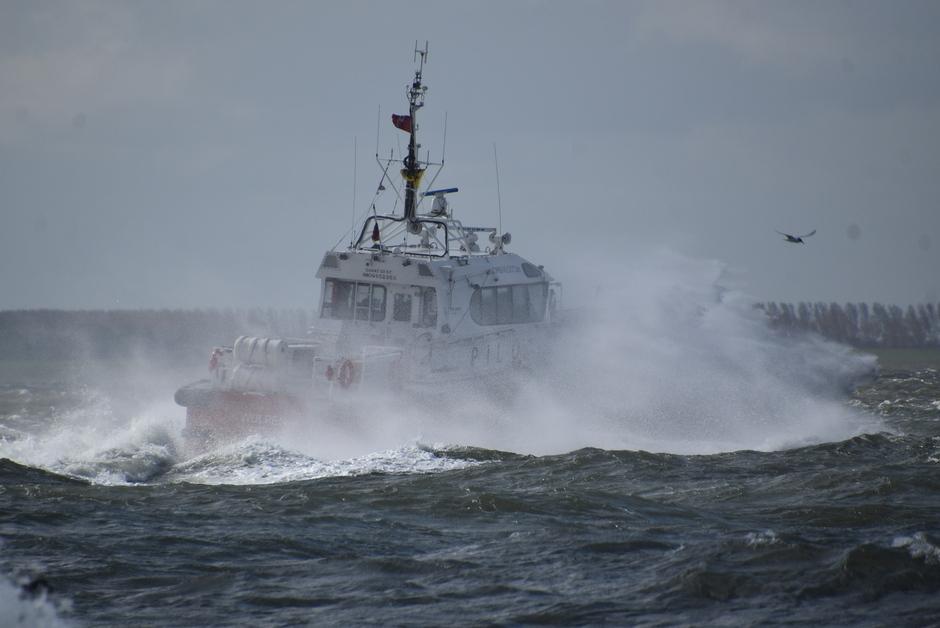 De loodsboot op zee