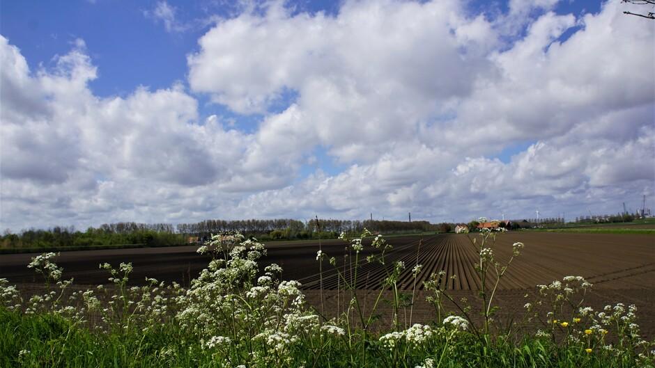 zon blauw wolken 16 gr in de polder