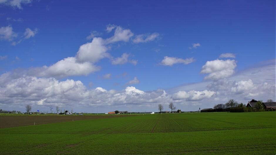zon blauw wolken 16 gr in de polder groeizaam weer