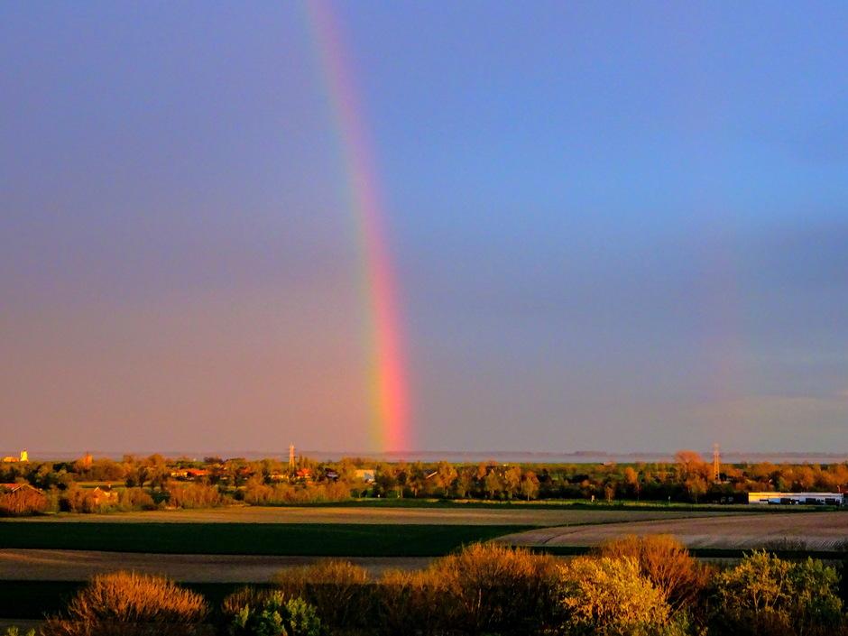 Regenboog en avondzon