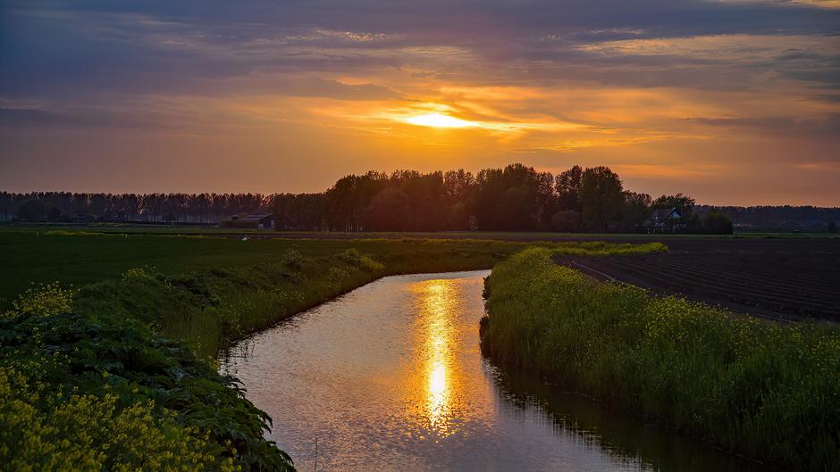 Sunset over Voorne