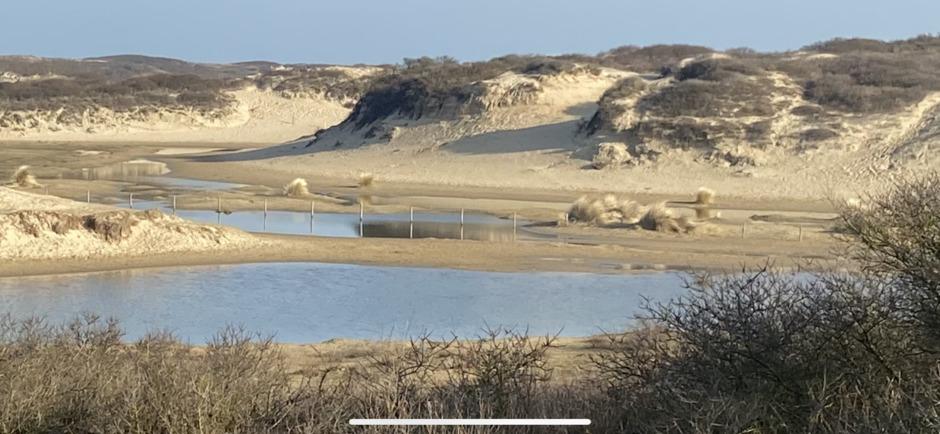 prachtig duin landschap