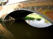 Swan under the bridge, Nayland
