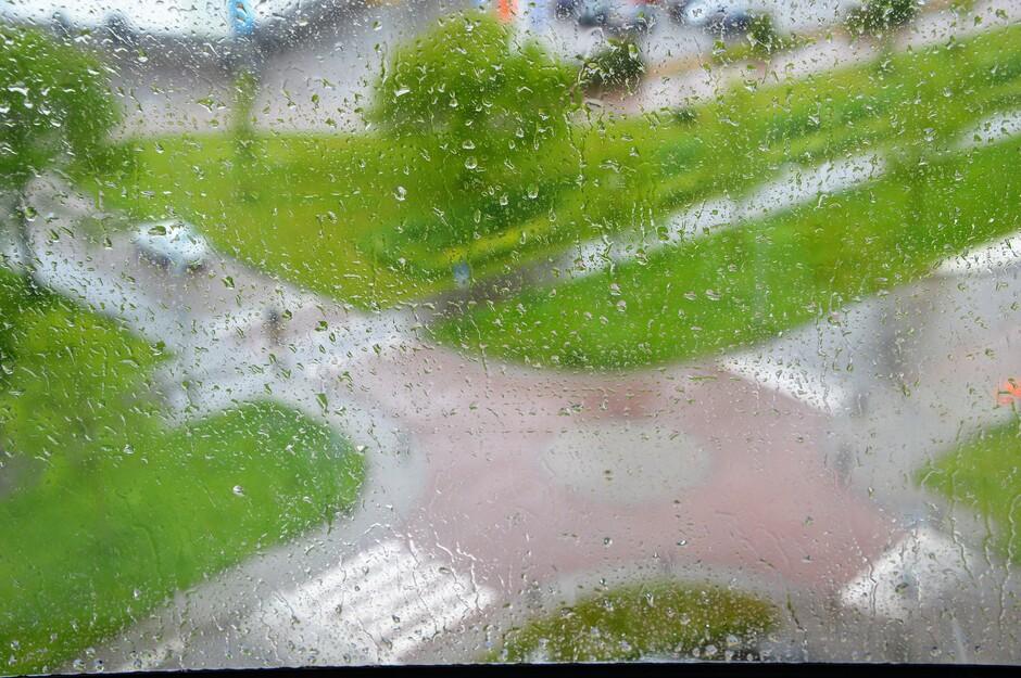 Regendruppels