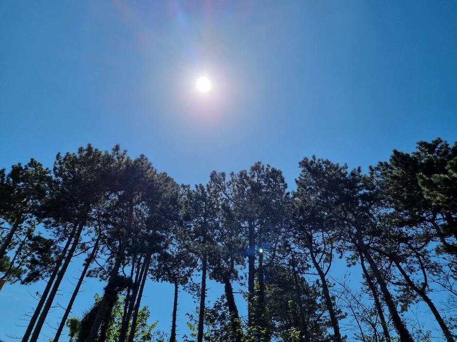 Strak blauwe lucht