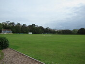 Seagulls at the Exmouth Cricket Club