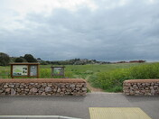 Maer Nature Reserve from Queen's Drive, Exmouth