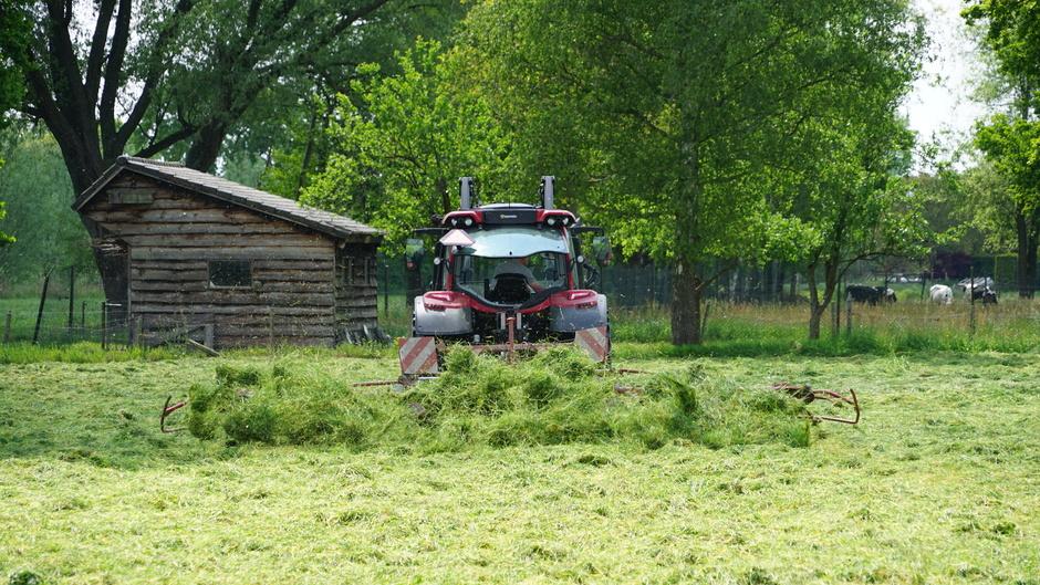 Grasdrogen