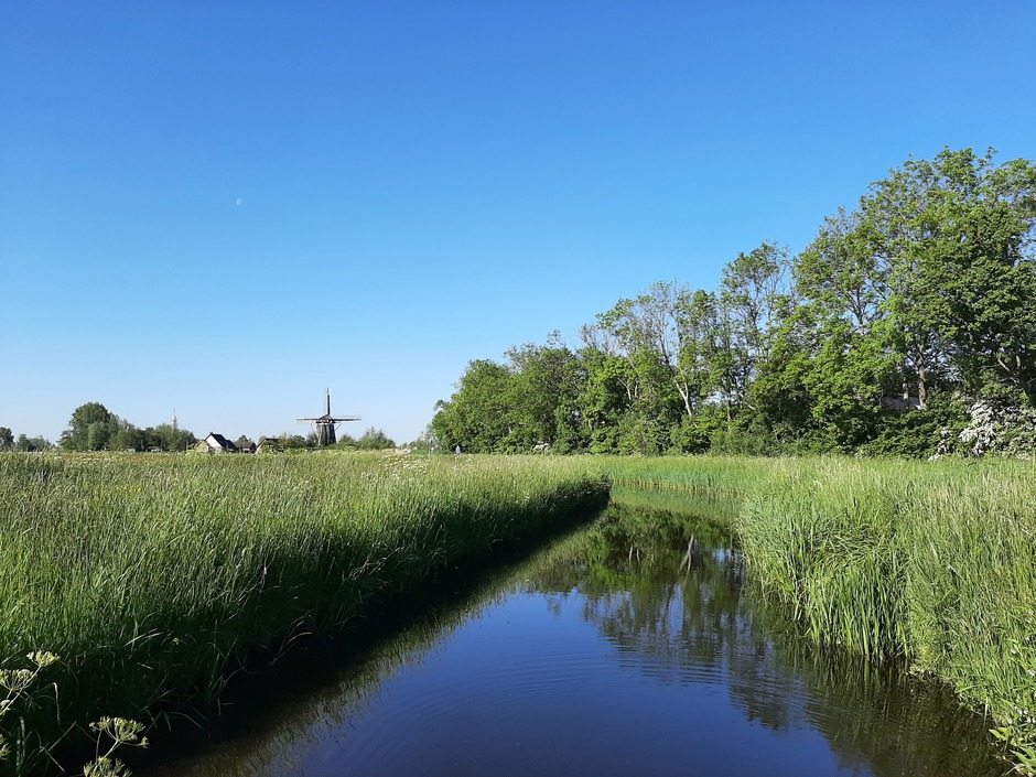 Staal blauwe lucht