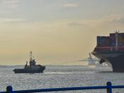 MSC ISTANBUL arriving in Felixstowe Docks