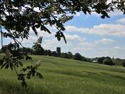 Two Suffolk churches