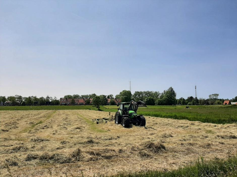 Het gras is klaar om te hooien
