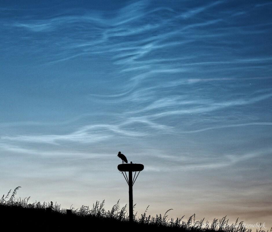 Eerste lichtende nachtwolken