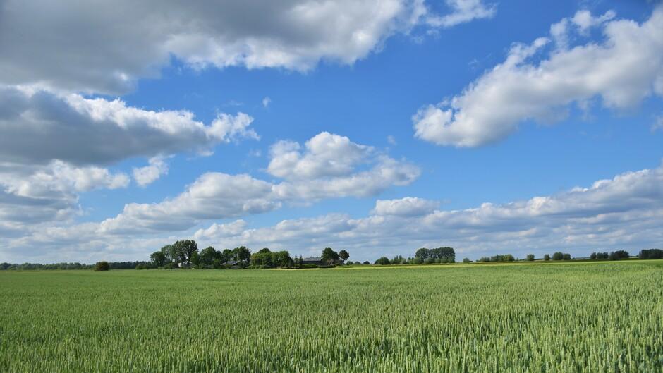 Mooie wolkenlucht eind van de middag