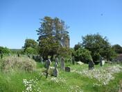 Littleham Church grounds