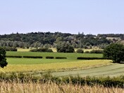 suffolk essex border near Stratford St Mary/Langham