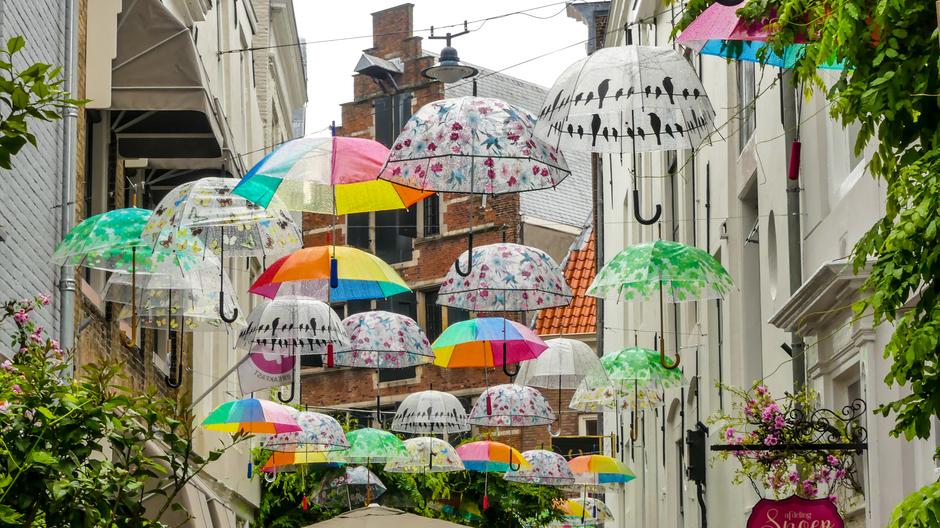Lichte regenbuitjes / Parapluweer