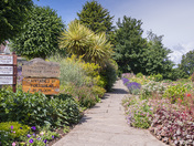 Rodmoor Gardens