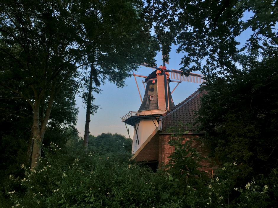 de molen nabij Noorderhoogebrug
