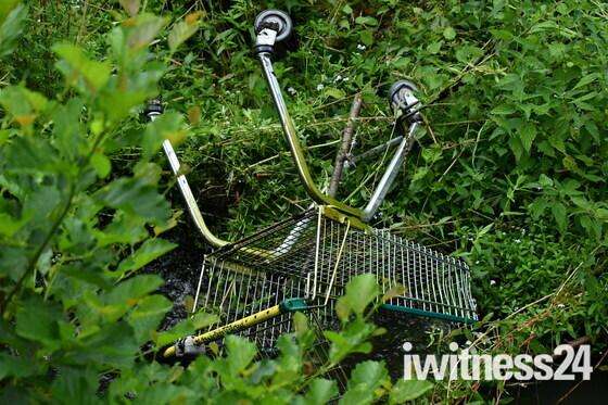 River Waveney Cleanup