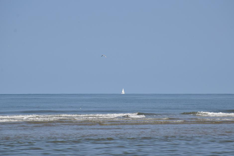 Heerlijke zomerse, bijna windstille ochtend aan zee