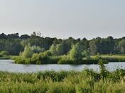 St Andrews Broad at Thorpe Marshes
