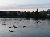 Setting Sun over The Mere, Diss