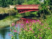 By the beautiful bridge