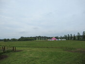 """Darts Farm"" circus tent"