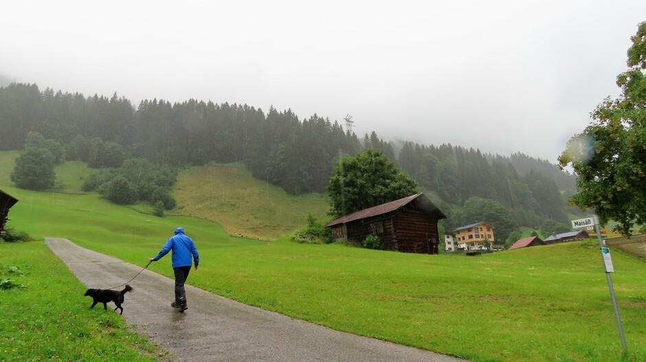 Alpen: morgen zon