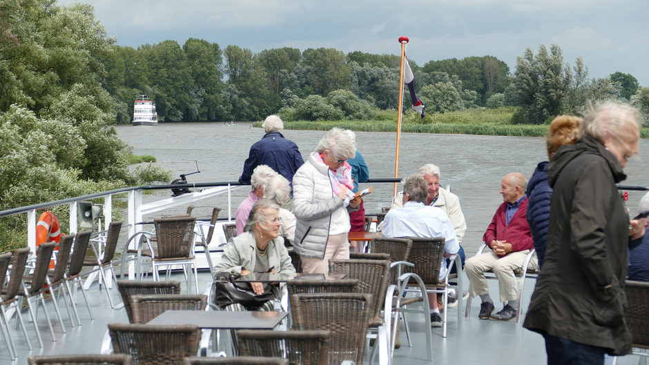 Biesbosch om 14.00 uur, zonnig
