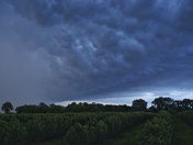 Stokesby storm