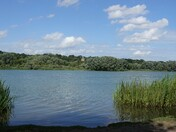 Whitlingham Broad and Country Park
